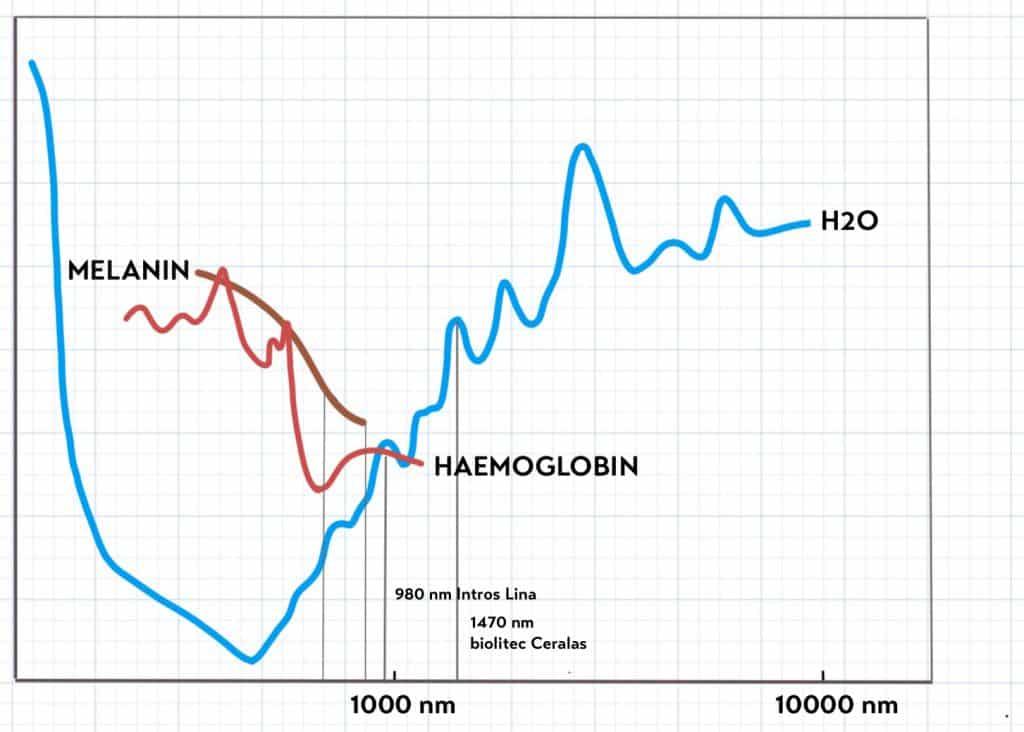 Schema der Absorptionskurven für medizinisch relevante Chromophore